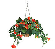 Bethlehem Lights 30 LED Battery Op. Hibiscus Fiber Hanging Basket - H198924