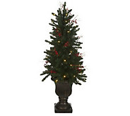Bethlehem Lights Outdoor Safe 4 Tree in Urn w/50 LED Lights - H196929