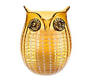 Home Reflections Glass Owl Hurricane w/ Candle & Timer - H199255