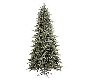 9-1/2 Frosted Frasier PE Fir Tree w/Clear Lights by Vickerman - H183380