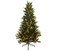 Santas Best 6.5 BlueSpruce LED Tree with Retro Bulbs and 5 Year LMW - H198083