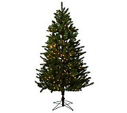 Holiday Bright Lights 6.5 LED Spruce Tree w/One-Plug and 5 Year LMW - H197884