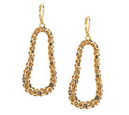 Susan Graver Freeform Shape Crystal Encrusted Drop Earrings - J263236