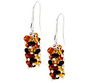 Baltic Amber Bead Cluster Sterling Dangle Earrings - J275243