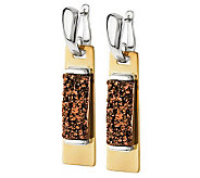 RLM Studio Drusy Sterling & Brass Earrings - J270054