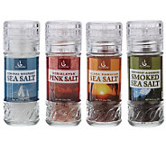 Gourmet Nut (4) Sea Salts Collection for Blue Jean Chef - M25331
