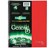 Roaring Spring Genesis 5 Subject, College RuledNotebook - M113166