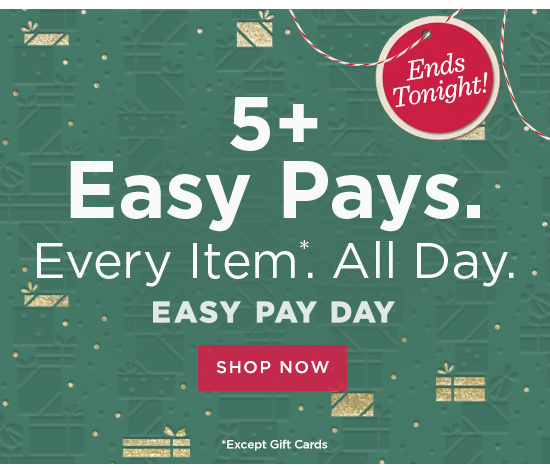 5+ Easy Pays  Every Item.* All Day.
